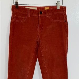 Anthropologie:Pilcro and the letterpress pants